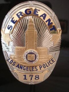Crime fiction police stories non fiction